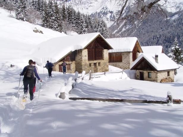 Snowshoeing, Alpine Skiing and Cross-Country Skiing