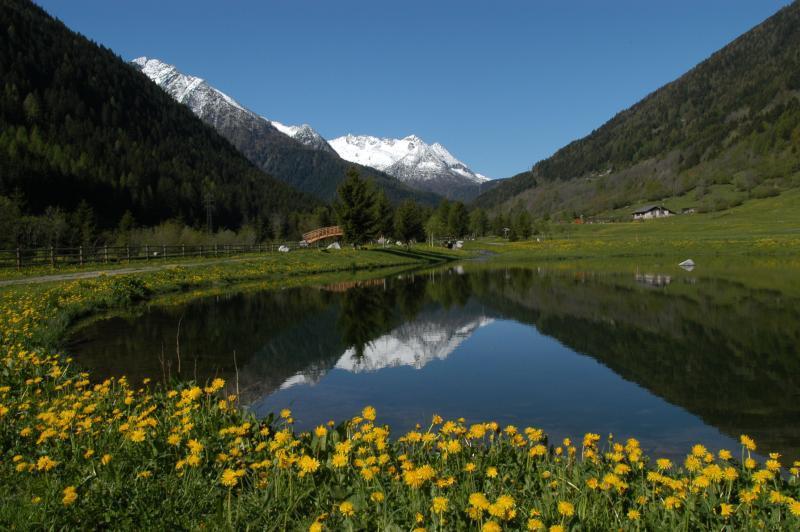 Stelvio national park benny bio hotel for Immagini di laghetti